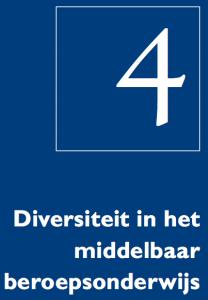 Diversiteitsmonitor, hoofdstuk 4